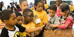 Horizons at Warner: Enrichment Program for RCSD Students in Grades K-8