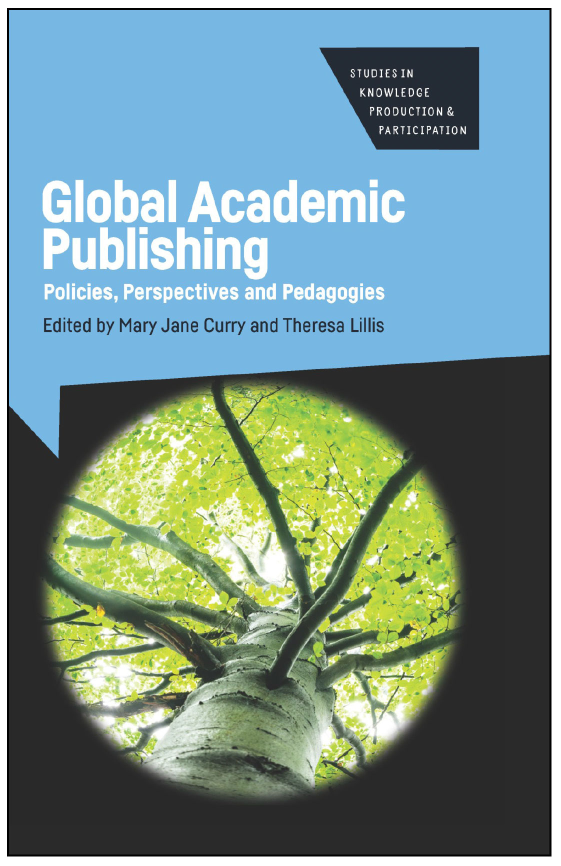 Global Academic Publishing book cover